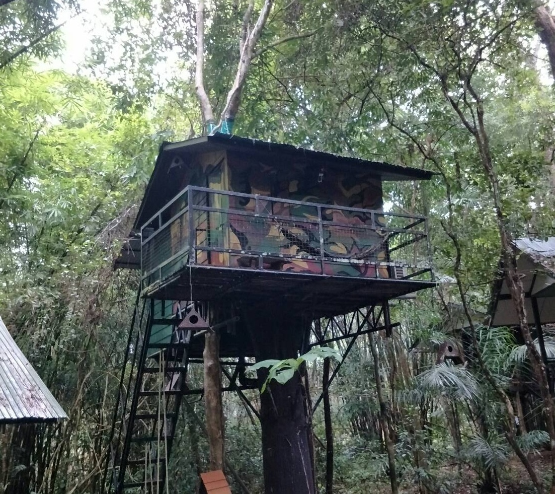 Khao Sok Jungle Safari Tour - Eco Tour Phuket
